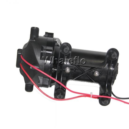 Salt water pump for boat